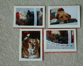 set of 4 Christmas pet cards