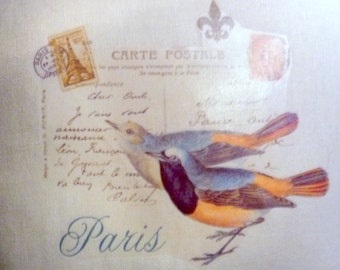 Decorative Pillow Cover - Linen Pillow Cover - French Postcard - blue and orange birds - Paris -16x16 - French country decor