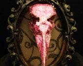 Halloween Raven Crow Skull Resin Memento Mori framed