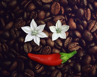 Fine art photography Brown Wall art decor Still Life Hot coffee and Chili peppers Food Funny creative Kitchen White flowers red color Smile