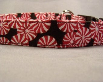 Peppermint Pinwheels on Black Dog Collar