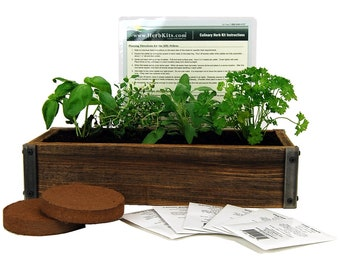 Reclaimed Barnwood Planter & Culinary Herb Garden Kit - Grow Basil, Dill, Cilantro, More