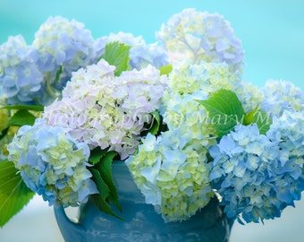 Flowers,Hydrangeas. Many shades Of Blue, Floral Photography, Nature Photography,. Home Decor