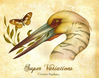Super Variations - Ltd Edition Giclee Print (Edition of 50)