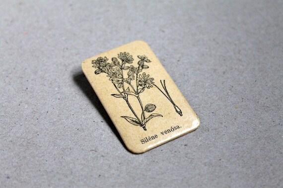 Botanical Brooch - Silene venosa