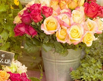 Flower photo - French Roses 1 - 10x8 art print - cool gift for gardeners paris france romantic travel photography farmers market