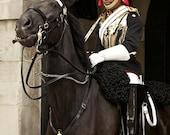 Gate Guard, London
