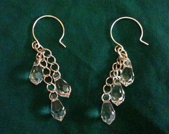 Dangling Crystal Earrings