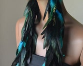 Extra Long Turquoise and Black Feather Earrings