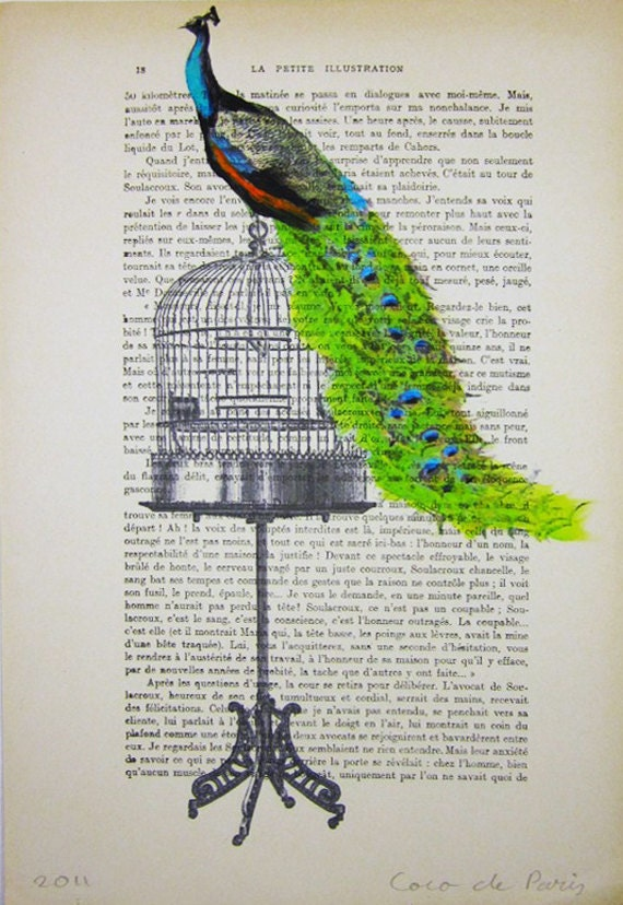 Peacock on birdcage - Original Illustration-Art Print-Art Poster- Hand Painting Mixed Media- French 1920 Vintage Paper