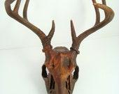 RESERVED for BOWMAN 92 Deer Skull Black Iron, Rust