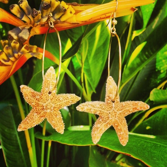 Real Orange Sugar Starfish Hoop Earrings