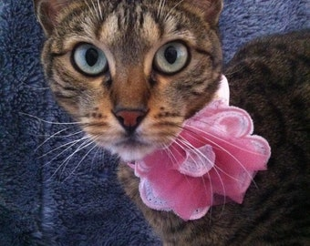 Pink flower collar by FiercePetFashion