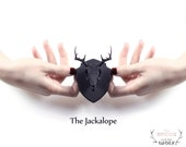 The Jackalope Mini Faux Taxidermy in black - An exquisitely detailed Jackalope Skull, mounted and ready to adorn your wall or office space.