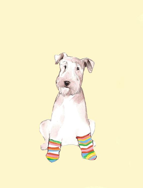 Peter in Socks
