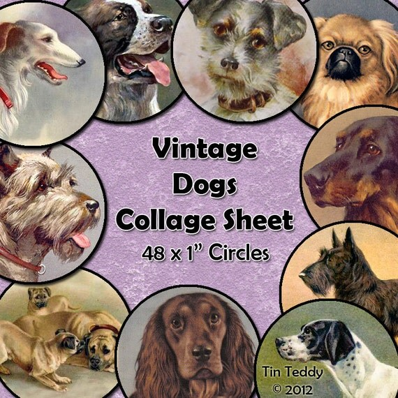 Vintage Dogs Digital Collage Sheet  - 1 Inch Dog Circles x 48,  For Bottle Cap Jewelry etc, Instant Download Dog Pictures