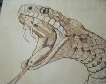 Striking snake, up close and personal, wood burn, pyrography art, unique wall decor