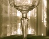 Vintage Fostoria Etched Glass Stemware in Midnight Rose Motif, Champagne/Sherbet