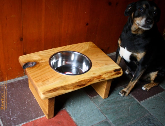 Rustic Elevated Dog Feeder Personalized Pet Bowl Raised Pet