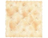 Saltine Cracker PRINT / Cracker Drawing / Pencil Drawing / Food Illustration / Square Food Art