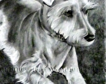 Custom Pet Portrait From Your Photo - 8x10 Original Dog Pencil Sketch Art Drawing From Picture