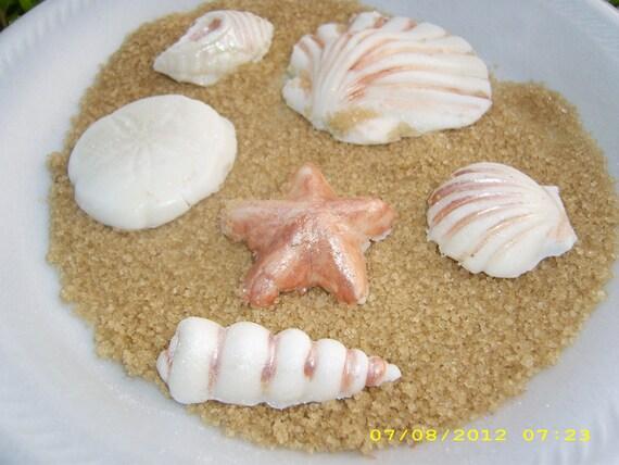 15 Edible Gumpaste Seashells