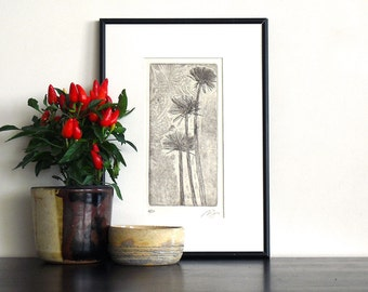 Original Etching Print PAPYRUS FLOWERS Botanical Aquatint Printmaking Fine Art Print Cottage Wall Decor Print 12x7