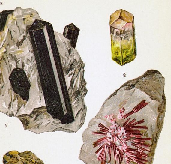 Tourmaline Staurolite Crystal Stone Mineral Gemstone Vintage Lithograph Edwardian Geology Print To Frame 33