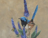 Pretty songbird on purple flowers ACEO baseball card size artwork print