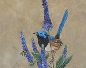 Hübsche Songbird auf lila Blüten ACEO Baseball Karte Größe Artwork drucken