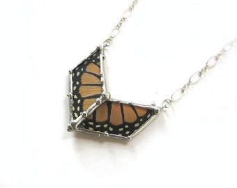 Small Monarch Butterfly Chevron Necklace - Real Butterfly Wings
