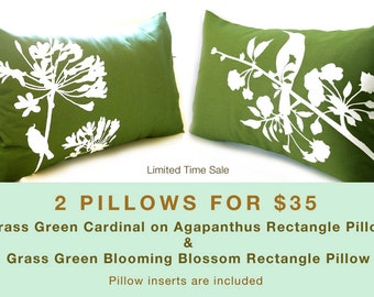 Limited Time Sale 2 Grass Green Bird Pillows for 35 US Dollars