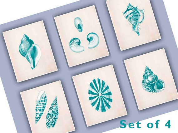 Nautical Print, Set of four 8x10'' Vintage Seashells Prints, turquoise green prints, seashore shells, Nautical art, cottage chic