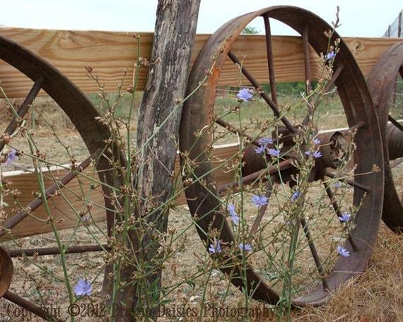 "Vintage farm equipment, Farm photography, Rustic, Country, Farm wall art, Antique farm, 8x10, 11x14, 16x20, ""Iron Wheels and Board Fence"""