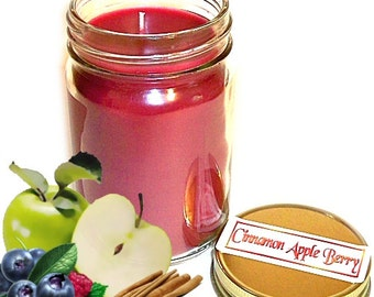 Cinnamon Apple Berry Mason Jar Candle Fruit and Spice Scent 12 Oz Handmade