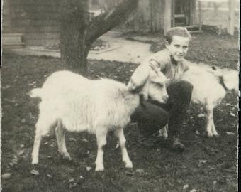 vintage photo Teen BOy w Goats