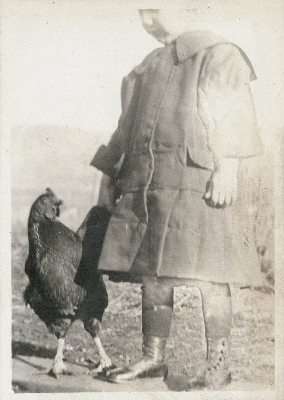 vintage photo Little Girl Holds Chicken Feather