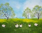 Five sheep in a field