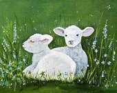 Wee sheep in a field