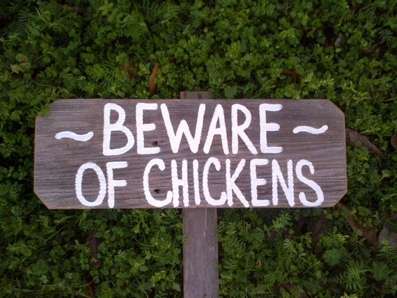 Funny Chicken Signs: Beware Of Chickens Funny Chicken Sign Farmers Sign Yard