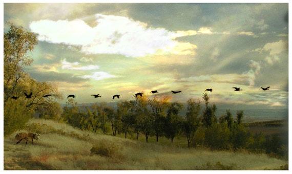Autumn Landscape Photography Collage Original Fine Art Photograph