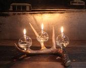 Modern Rustic Antler Oil Lamp -106- Trevor O'Neil Design