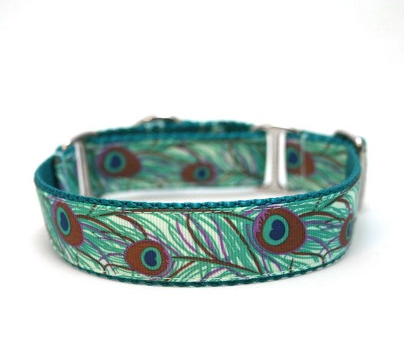 "1"" Peacock Feather martingale or buckle dog collar"