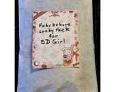 BJD 2 Pairs Panties Fukubukuro Grab Bag for SD Dollfie Girl