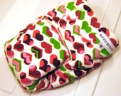 Final Clearance: Large Fitted Cloth Diaper by Banana Bottoms