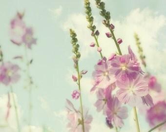 Hollyhock photo, honeysuckle pink, fresh mint green, summer flower, shabby chic, dreamy garden, soft - Hollyhocks 8x8