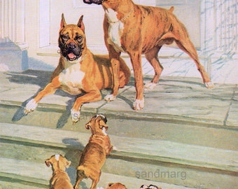 Vintage Dog Illustration Boxer Family Print to Frame