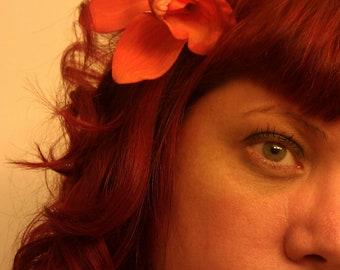Orange Scream Flower barrette, Spring hair clip, tropical flower hair clip, vlv,orchid, orange, flower clip,tropical flower