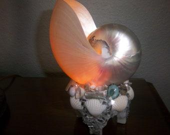 Beach Decor-Nautilus Shell Night light