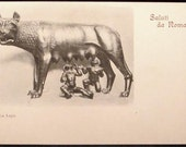 La Lupa Art Wolf Nurses Romulus Remus Saluti da Roma Rome Italy Antique Postcard